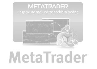 Meta Trader Logo - Weiterleitung!